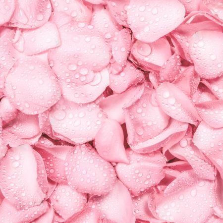 Rose Water + Benefits For Your Hair